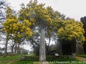 2021-02-25_La-Foret-Fouesnant_4